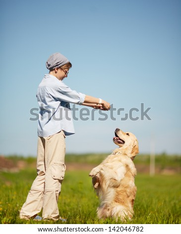 Portrait of cute lad playing with Labrador on grass - stock photo