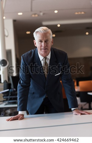 portrait of handsome senior business man with grey hait at modern bright office interior - stock photo