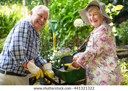 Portrait of happy senior couple with potted plants in garden - stock photo