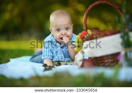 Portrait of little happy boy have a picnic - stock photo