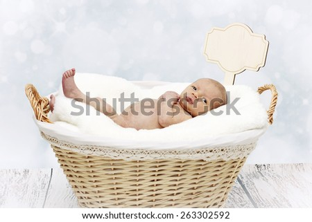 Portrait of little newborn baby lying in the basket - stock photo
