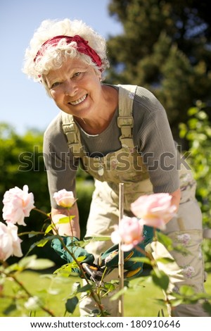 Portrait of lovely senior woman taking care of plants in her garden looking at you smiling - Elderly woman gardening in backyard on a sunny day - stock photo