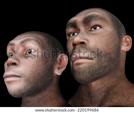 Portrait of male and female homo eretus in black background- 3D render - stock photo