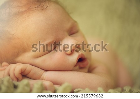 Portrait of Newborn Baby Sleeping on Hands in Basket - stock photo