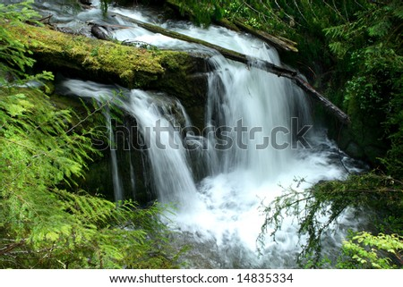 Portrait of Parker falls during the spring of 2008. - stock photo