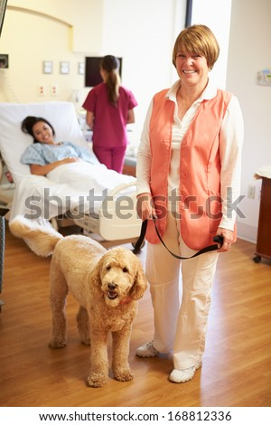 Portrait Of Pet Therapy Dog Visiting Female Patient In Hospital - stock photo