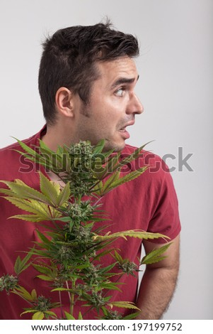 Portrait of scared man holding Cannabis plant.