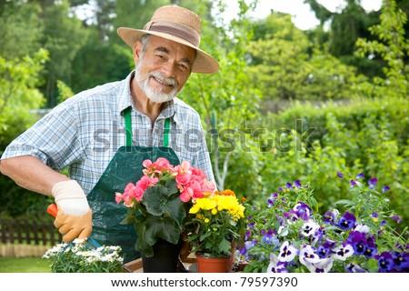 Portrait of senior man gardening - stock photo