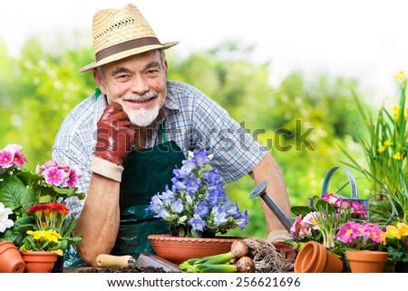 Portrait of senior man in the flower garden - stock photo