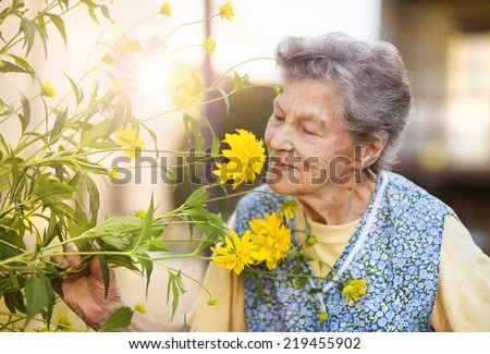 Portrait of senior woman in apron with yellow flower in the sunny garden - stock photo