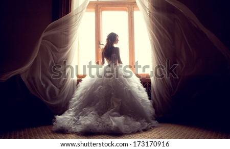 Portrait of the beautiful bride against a window indoors - stock photo