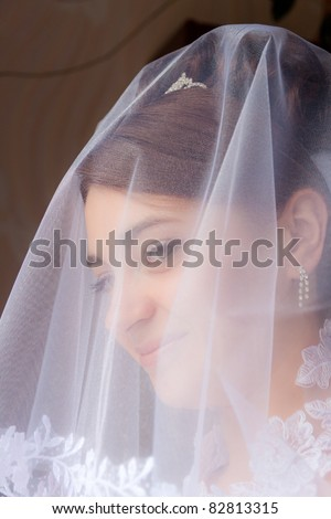 Portrait of the beautiful bride under a veil. Soft and smooth