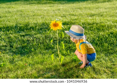 Portrait of toddler child outdoors. Rural scene with one year old baby boy wearing straw hat using watering can for sunflower