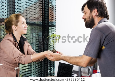 Portrait of two people holding tomato seedling in the office - stock photo