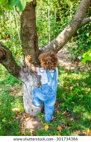 Portrait of 1 year old baby boy trying to climb a cherry tree.