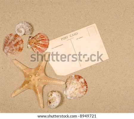 Post card, beach background, starfish, seashells, copy space.