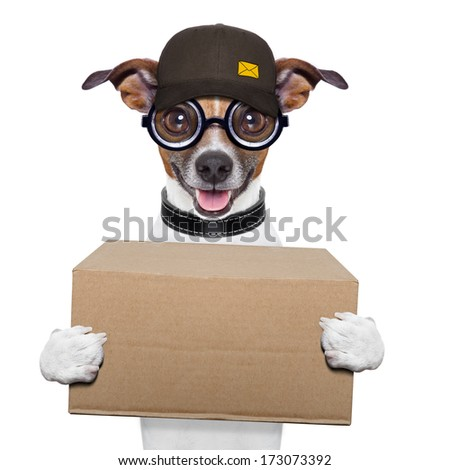 postal dog delivering a big brown package - stock photo