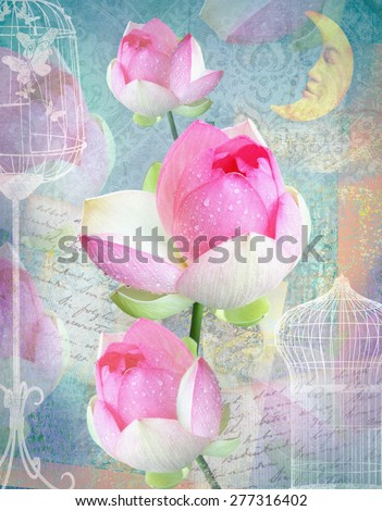 Postcard flower. Congratulations card with peonies, cells and moon. Beautiful pink flower. Can be used as greeting card, invitation for wedding, birthday and other holiday happening. Blue background. - stock photo