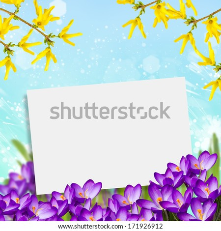 Postcard with fresh flowers  and place for your text. Abstract background for design. Spring background. - stock photo