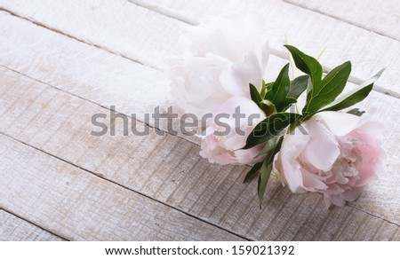 Postcard with fresh peony flowers on white wooden background. - stock photo