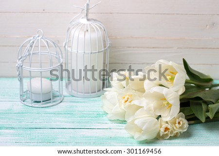 Postcard with fresh spring flowers  tulips and daffodils and candles on turquoise painted planks against white wall. Selective focus. - stock photo