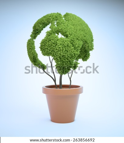 Pot plant shaped like a world map - ecology and green lifestyle concept