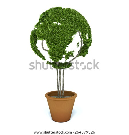 Pot plant shaped like a world map. Ecology and green lifestyle concept - stock photo