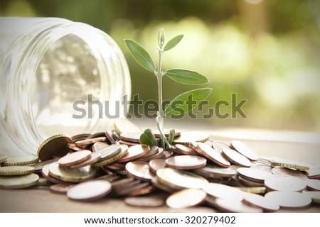 pot with coins saving concept - stock photo