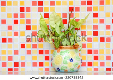 Pot with green on colored mosaic background  - stock photo