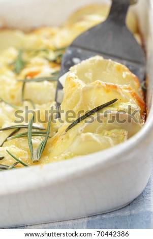 Potato and Kohlrabi gratin with rosemary in the white casserole - stock photo