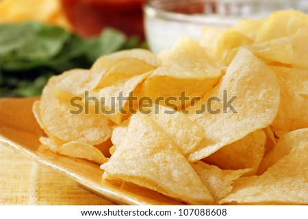 Potato chips with salsa, fresh veggies and party dip in soft focus in background.  Macro with shallow dof.