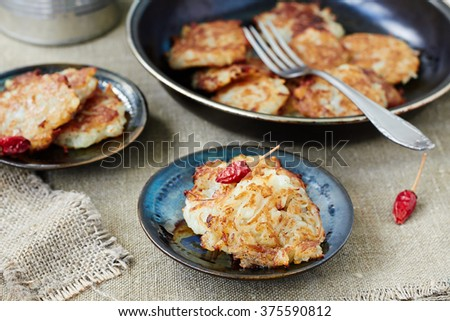 Potato fritters  on a plate. style rustic.selective focus - stock photo