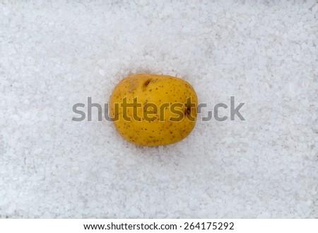 Potato macro as background with salt. - stock photo