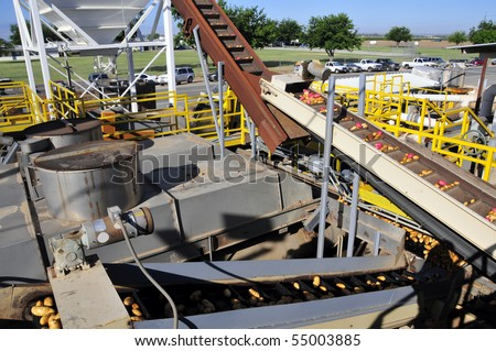 Potato packing plant: Potatoes are handled on a labyrinth of conveyors to be washed, culled, sorted and packed - stock photo