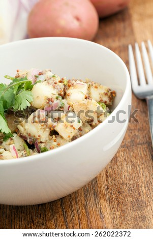 Potato salad freshly homemade without mayonaise.  Ingredients include cilantro olive oil vinegar whole grain dijon mustard red onions and potatoes.  - stock photo