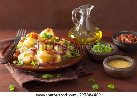 potato salad with bacon onion mustard - stock photo