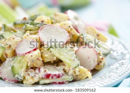 potato salad with cucumber and radish - stock photo