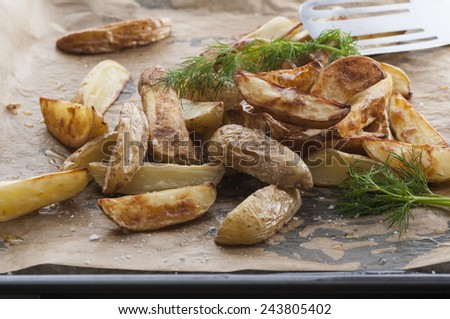 Potato wedges from the oven. Dill at the top. Spiced with sea salt. - stock photo