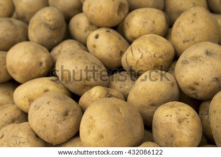 Potatoes background, potatoes raw vegetables food in market for pattern texture and background, pile of potatoes lying, raw potato mound, potato vegetable style, many potatoes view, decoration potato  - stock photo