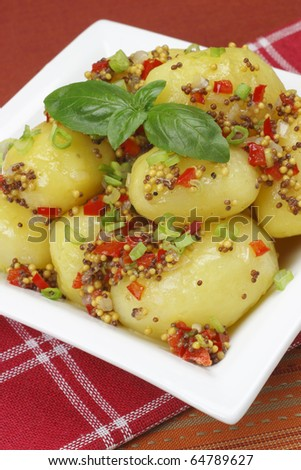 Potatoes in a mustard sauce - stock photo