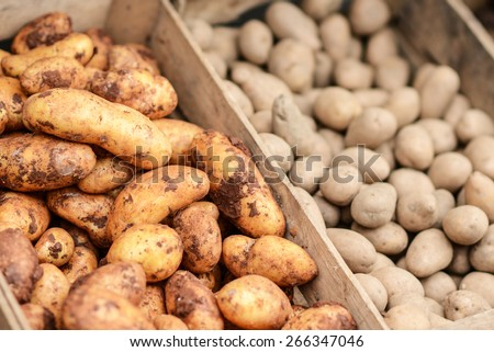 Potatoes in a wooden crate - stock photo