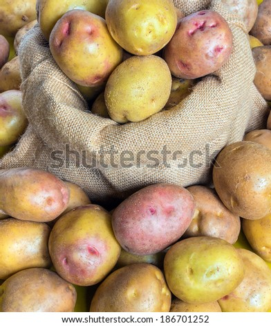 Potatoes in the burlap sack on the background from potatoes - stock photo