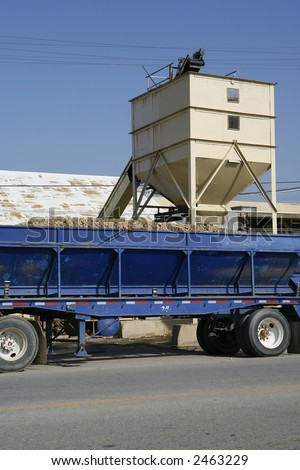 Potatoes loaded onto a tractor trailer rig with conveyor belt and loading hopper in background - stock photo