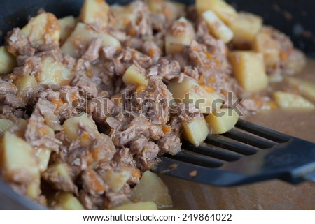 potatoes with stewed meat - stock photo