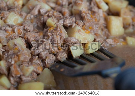 potatoes with stewed meat on plate - stock photo