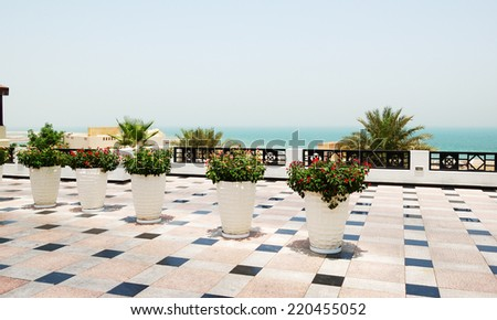 Pots with flowers at the luxury hotel, Ras Al Khaimah, UAE