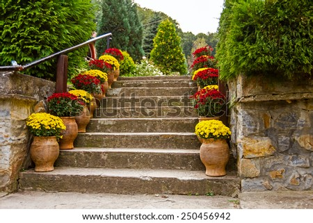 Potted flowers on a staircase in full bloom leading to a garden or patio - stock photo