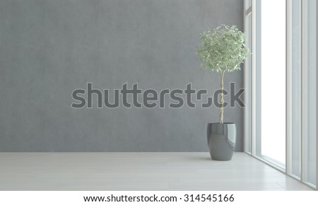 Potted House Plant in Shiny Black Pot Thriving in Empty Room Next to Bright Window in Apartment with Gray Walls. 3d Rendering. - stock photo