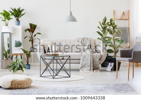 Pouf Grey Armchair Botanic Living Room Stock Photo (Edit Now ...