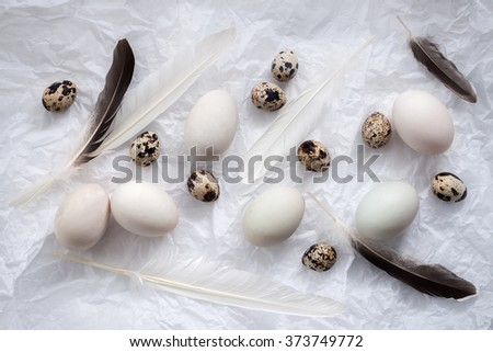 poultry eggs flat lay still life with food stylish fresh raw ingredient healthy cholesterol protein vitamin natural rustic flat lay - stock photo